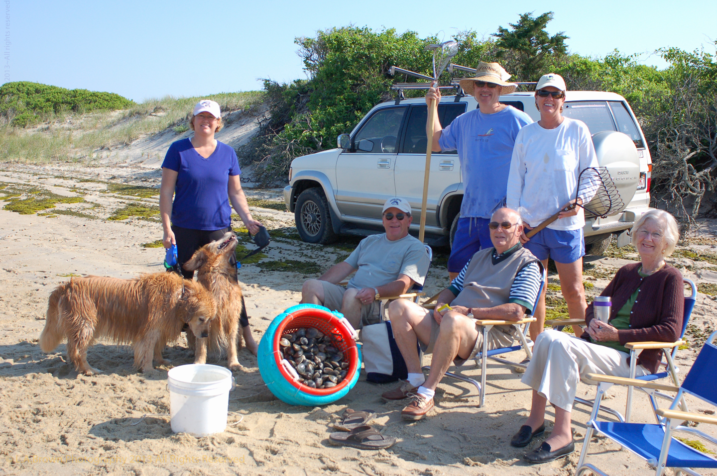 Beach, Clamming, Dog, Lisa Brown