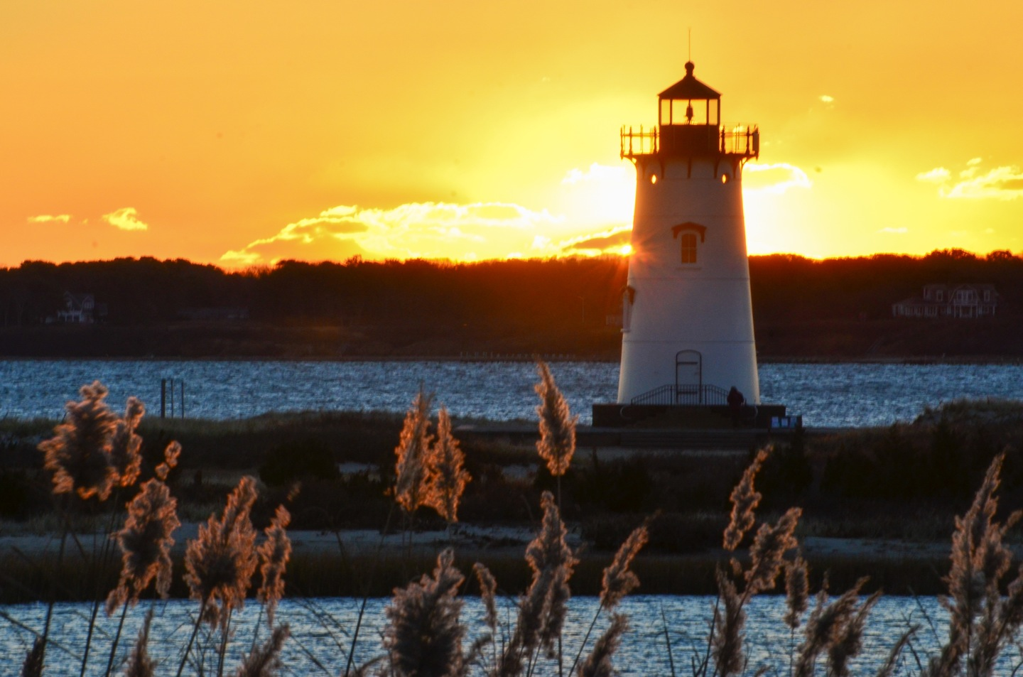 Edgartown, Lighthouse, Steve Myrick