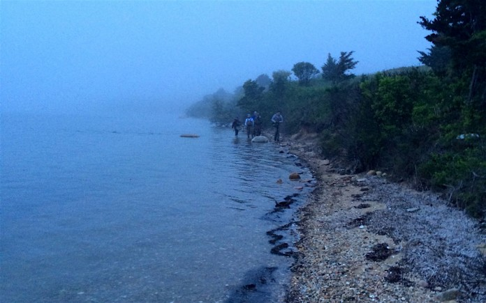 Gone fishin': Striped bass proved elusive on a foggy night